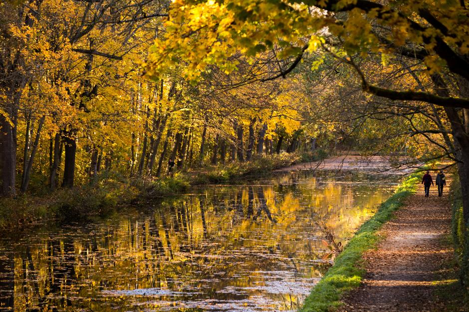 Autumn on the Ludwig Canal | Autor: Daniel Karmann/DPA/PIXSELL