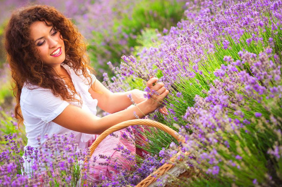 Girl on lavender field | Autor: Kirill Grekov