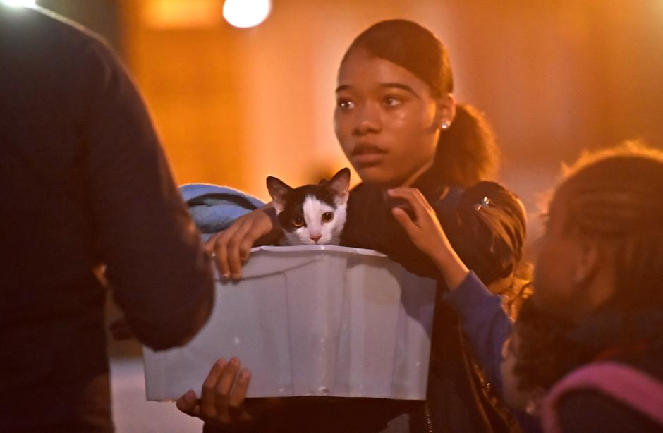 A resident and a cat are evacuated from the Taplow Tower residential block as a precautionary measure following concerns over the type of cladding used on the outside of the building on the Chalcots Estate in north London | Autor: Hannah McKay/REUTERS