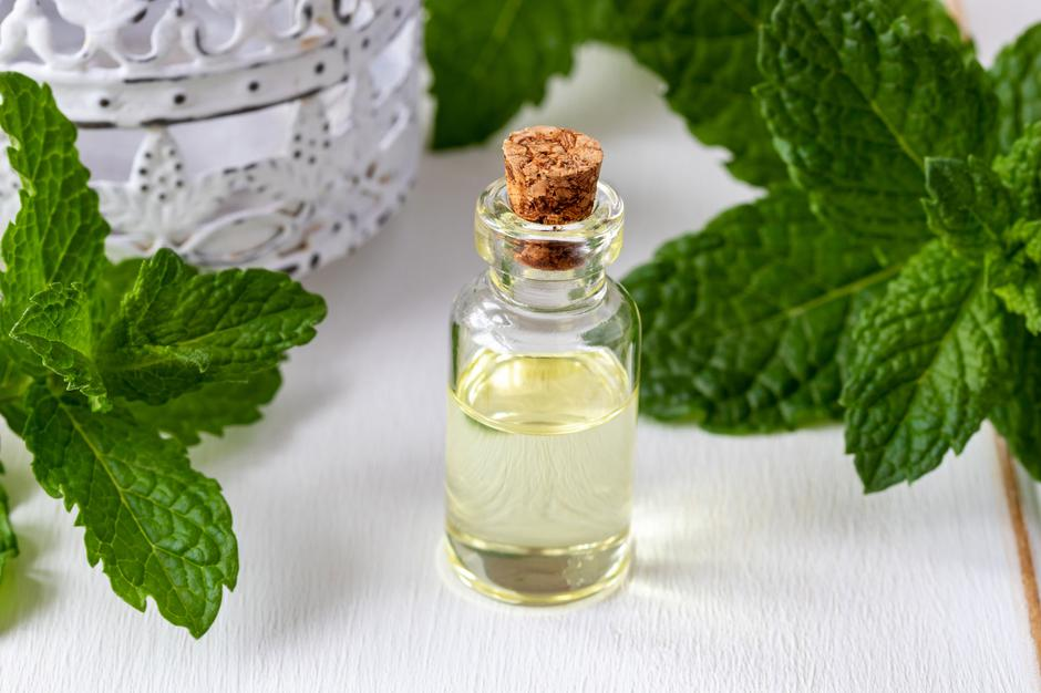 A bottle of essential oil with fresh peppermint leaves | Autor: Madeleine Steinbach