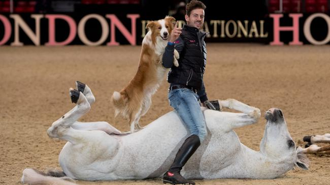 Olympia, The London International Horse Show - London