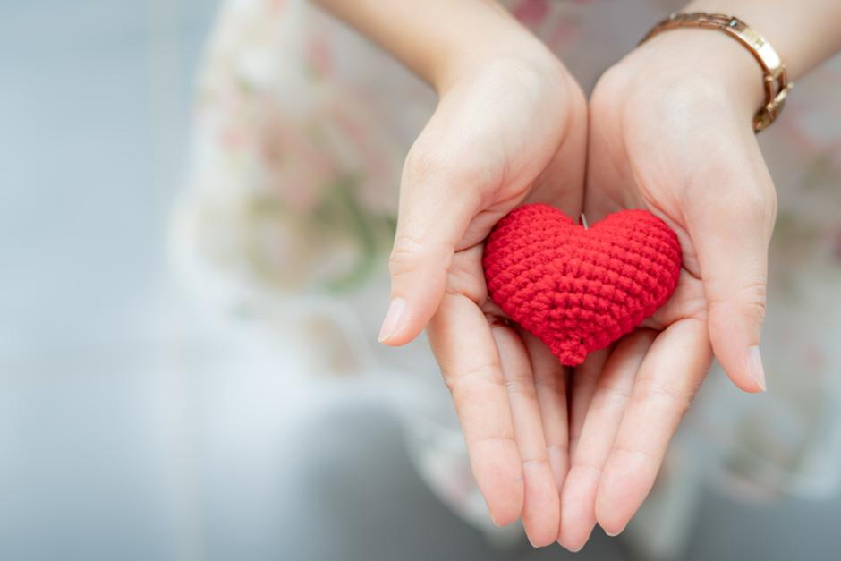 Red heart in hands from above. Healthy, love, donation organ, do | Autor: dreamstime