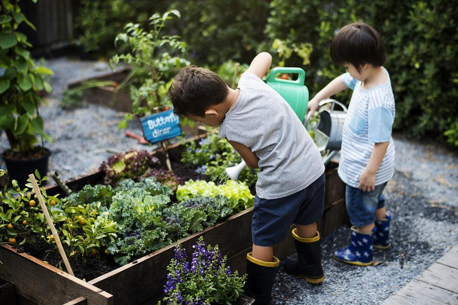 Group of kindergarten kids learning gardening outdoors | Autor: Dreamstime