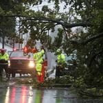 Crews with the Charleston Fire Department clear a fallen tree during Hurricane Dorian in Charleston