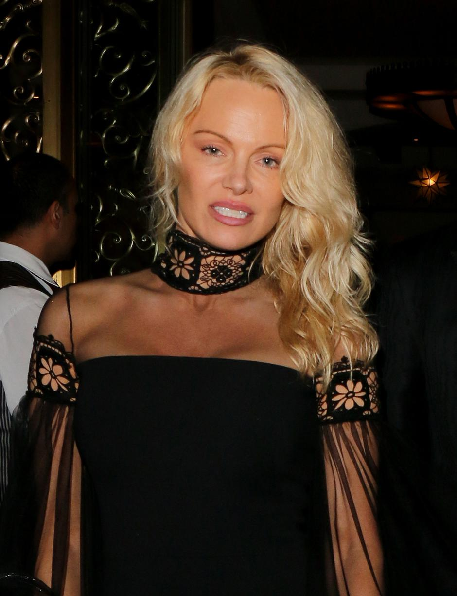 Double Dyed! Pamela Anderson wore her hair in her customary blonde and son Brandon Lee showed off his newly dyed gray locks as they dressed up for Sean Penn's Haiti Benefit event at the Montage Hotel in Beverly Hills | Autor: Profimedia