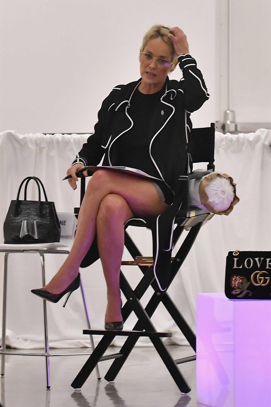 Sharon Stone speaks to a panel of Women at the Gagosian Art Gallery | Autor: PPLF