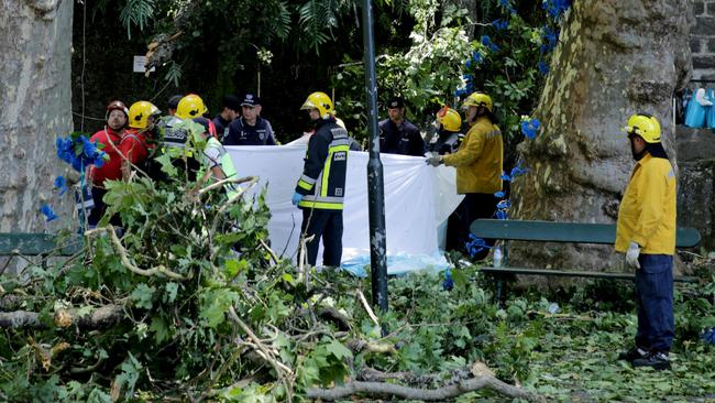 Firefighters cover victims of a tree that toppled into worshipping crowds during a religious festival in Funchal