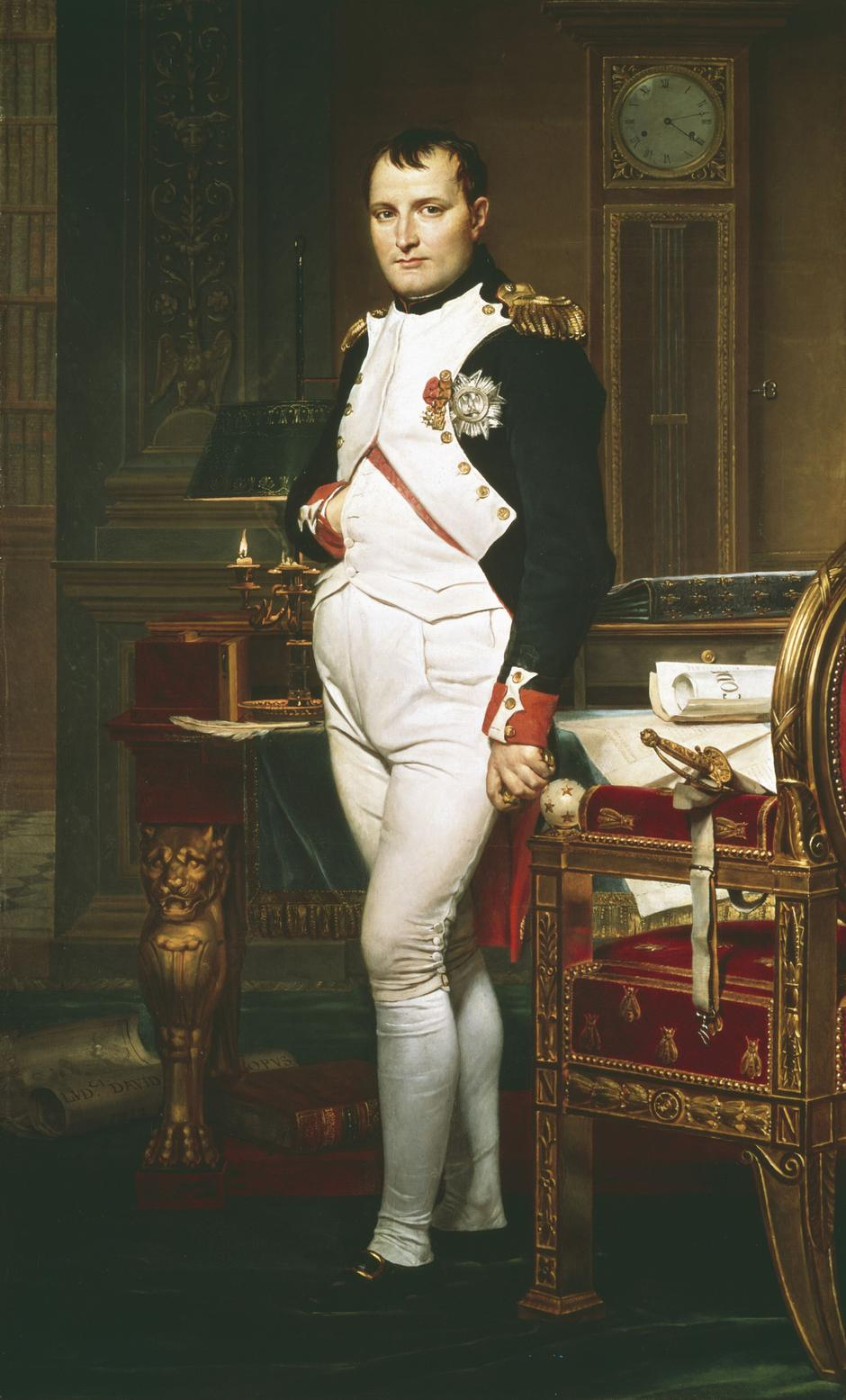 Portrait of Napoleon by David Jacques Louis | Autor: Photos.com